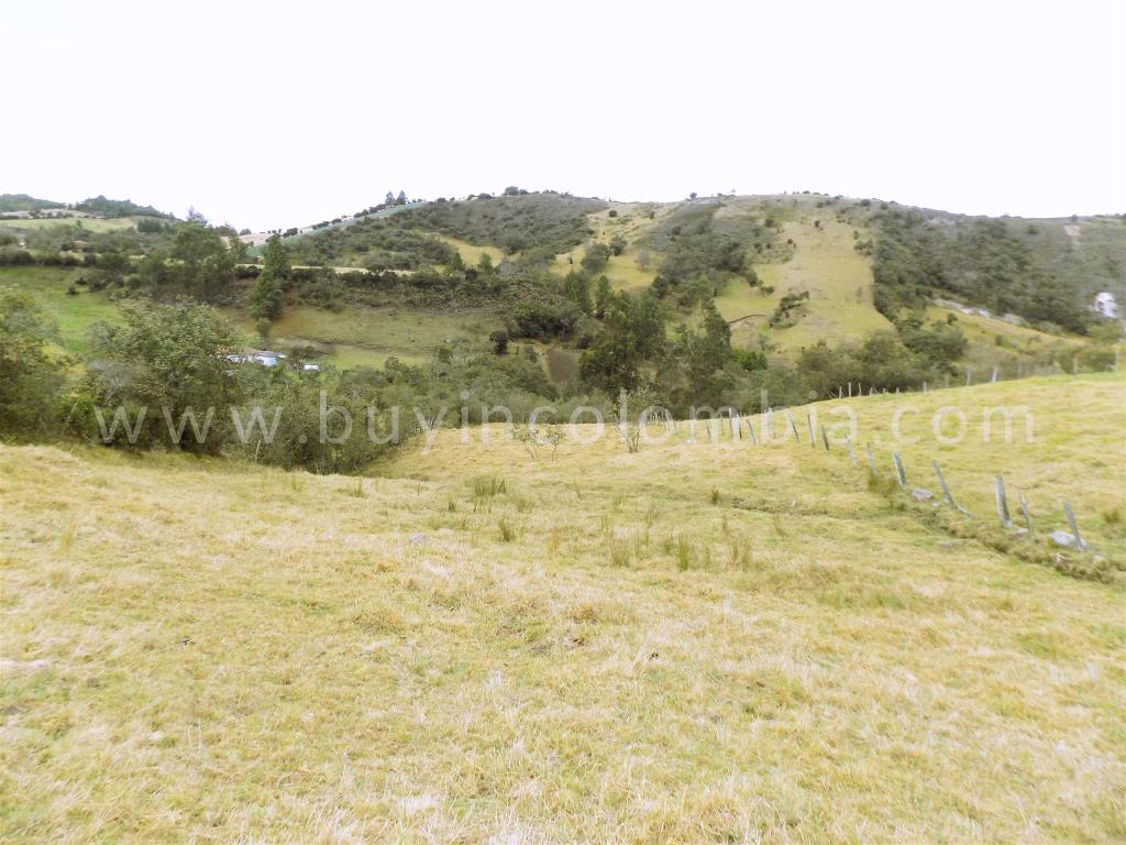 Farms for sale - Water Crisis Solucion Guatavita - Buy in Colombia