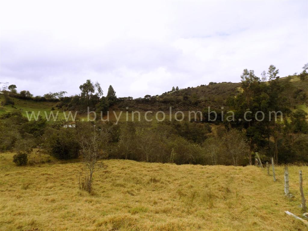 Farms for sale - Water Crisis Solucion Guatavita - Buy in Colombia